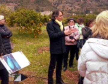 Zu Besuch beim 'König der Orangen' in Sóller